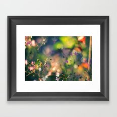 The Rainbow Forest I Framed Art Print