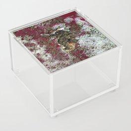 Rusty art  Acrylic Box
