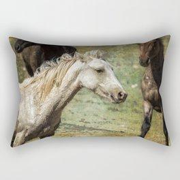 Nimbus, No. 2 Rectangular Pillow