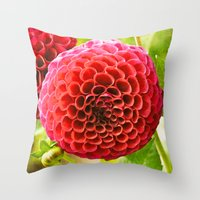 dahlia Throw Pillows featuring Dahlia by Sparrow House Photography