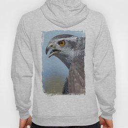 Northern Goshawk Screeching Hoody