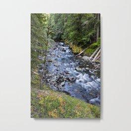 Ohanapecosh River Metal Print