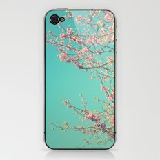 pretty pink blossoms iPhone & iPod Skin