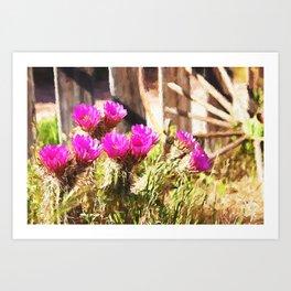 Pink Cactus Flowers In Nevada Art Print