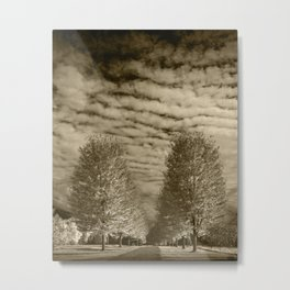 Sepia Tone of Rows of Autumn Trees with Cirus Cloudy Sky in Southwest Michigan Metal Print