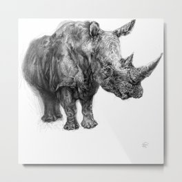 a Rhino called BigButy Metal Print
