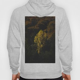 Yellow tree standing out from the crowd Hoody