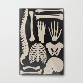 Osteology Metal Print