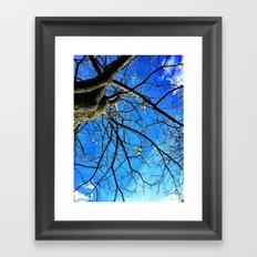 Catalpa Framed Art Print