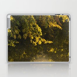 Alley of lime trees in Autumn #2 Laptop & iPad Skin