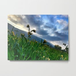 San Jacinto Beauty Metal Print