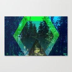 Nature Portal Canvas Print