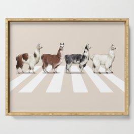 Llama The Abbey Road #2 Serving Tray