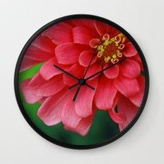 Summer's Jewel Wall Clock