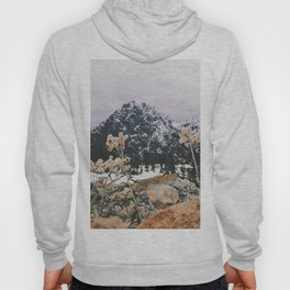 Mountains + Flowers Hoody