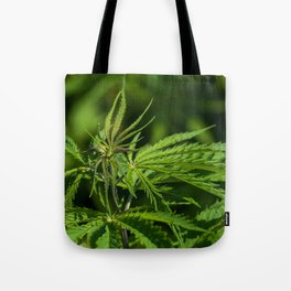 Green Leaves Hemp Cannabis Tote Bag