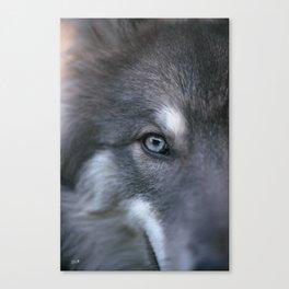 Universe Eye Canvas Print