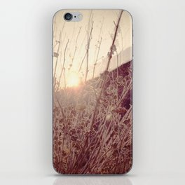In a Different Light iPhone Skin