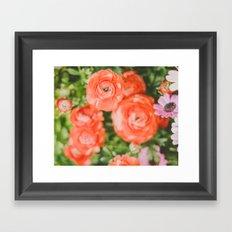 The joy of hot red flowers Framed Art Print