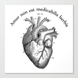 Amor non est medicabilis herbis Canvas Print