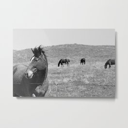 Flowing Mane Vogue Metal Print