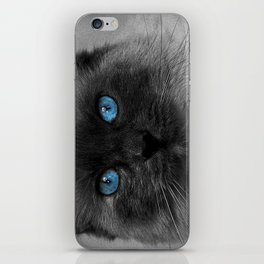 CATTURE iPhone Skin