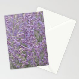 Lavender Field in Brussels Belgium Stationery Cards