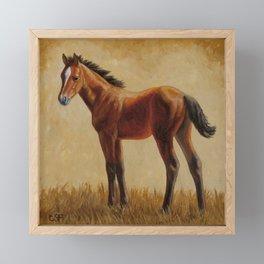 Bay Quarter Horse Foal Framed Mini Art Print