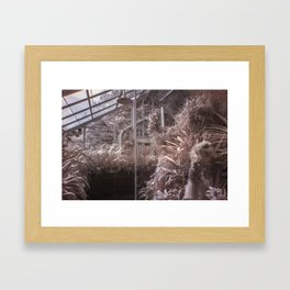 Conservatory Infrared Framed Art Print