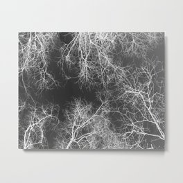 White silhouetted trees Metal Print