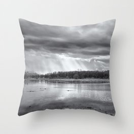 Birdland BW Throw Pillow
