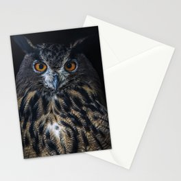Pretty Eagle Owl portrait Stationery Cards