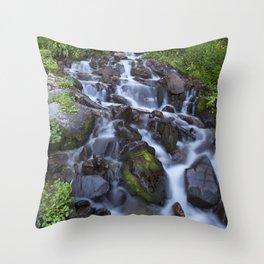 Spring Runoff Throw Pillow
