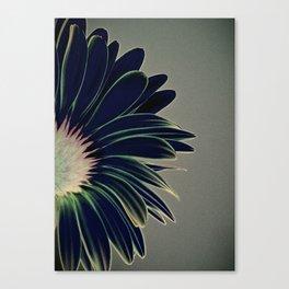 dark underside Canvas Print