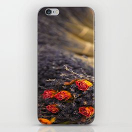 DRIED FLORAL BUNCH iPhone Skin