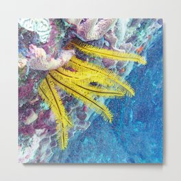 Watercolor Sealife, Golden Crinoid 03, St John, USVI, Blowin' In The Current Metal Print