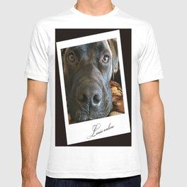 Louis online T-shirt