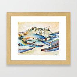 Crab Eyes Framed Art Print