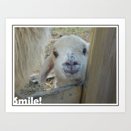 Smile! Art Print