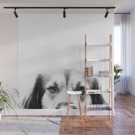 Dog portrait Wall Mural