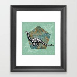 Brachiosaurus Fossil Framed Art Print