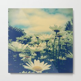 Daisy Love Metal Print