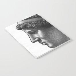 Athena Notebook