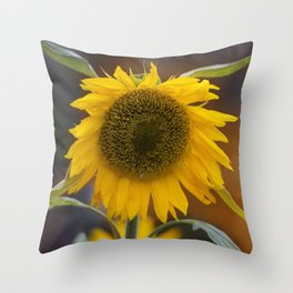 Sunflower in the field Throw Pillow