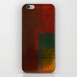 Bury My Heart at Wounded Knee iPhone Skin