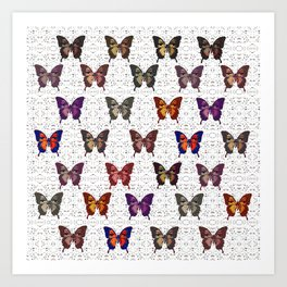 Butterflies Variation 05 Art Print