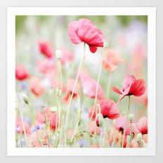 Poppy pastels Art Print