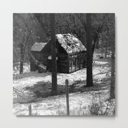 Nestled in the woods... Metal Print