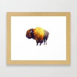 Buffalo Abstract #2 Framed Art Print