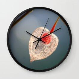 Japanese Lantern Flower Fruit Close up Wall Clock